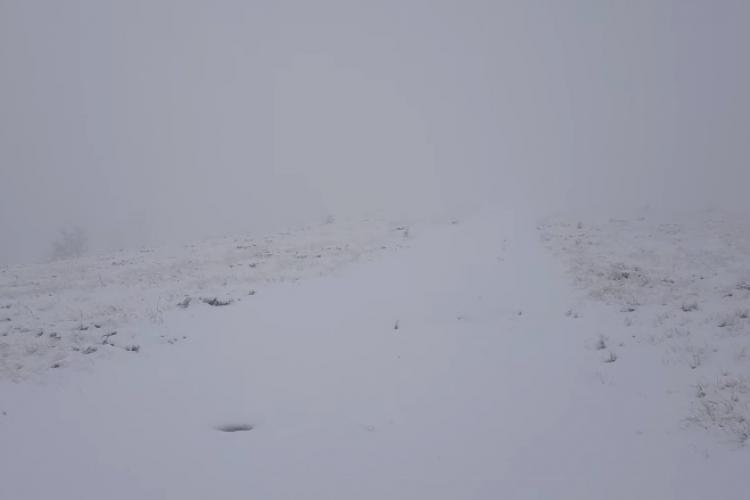 Primii fulgi de zăpadă au căzut pe masivul Vlădeasa - VIDEO