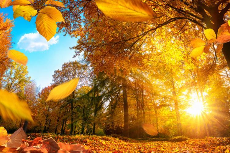 Prognoza meteo 18 octombrie - 15 noiembrie 2021. Vreme anormal de caldă în următoarea lună