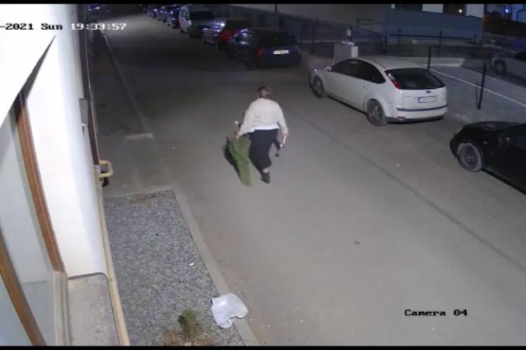 """Femeie filmată în Florești, când taie brazii tuia din jurul blocului. Vecinii spun că e """"diavolul"""" în persoană - VIDEO"""