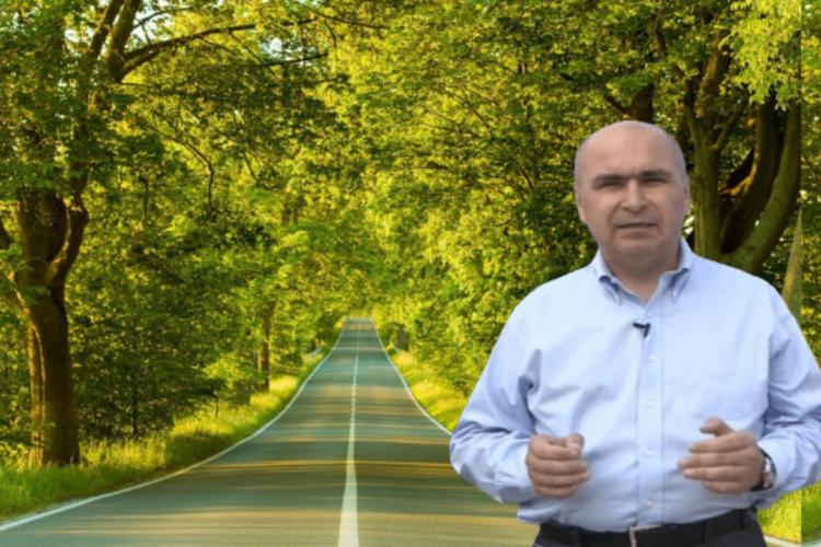Ilie Bolojan face Bihorul frumos. Lecție pentru alți politicieni! Plantează copaci pe drumurile județene și naționale