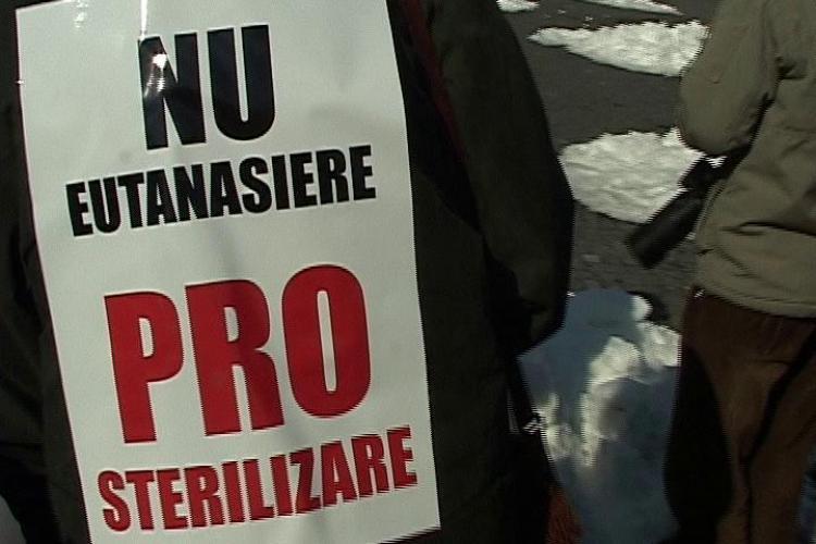 Flash mob impotriva eutanasierii cainilor vagabonzi, in Piata Unirii! - VIDEO si FOTO