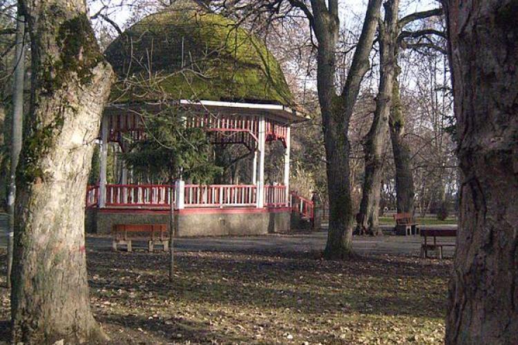 Cluj Napoca va fi un oras mai verde potrivit noului PUG! Primaria a demarat consultarile cu cetatenii