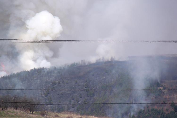 Incendiu de padure la Campenesti! Galerie FOTO