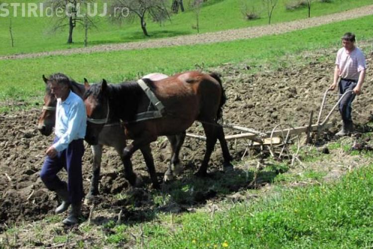 PSD Cluj: Taranii merg 50-60 de kilometri pentru a ajunge la un centru APIA