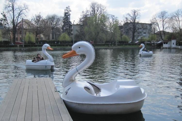 Barci si hidrobiciclete pe lacul din Parcul Central! VEZI preturile