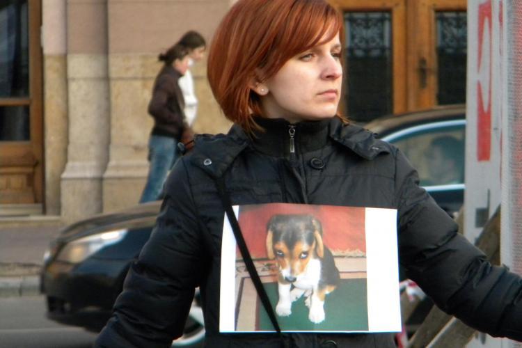 Flash mob anti eutanasierea cainilor in Piata Unirii - VIDEO si FOTO