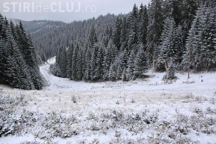 Consiliul Judetean Cluj a avizat defrisarea a 3 hectare de padure in Baisoara pentru viitoarea pista de schi!