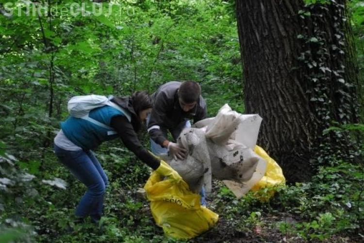 Maine, 1 mai, actiune de ecologizare a zonelor Hoia, Faget si Sf Ioan, organizata de PDL! Daca doriti, va puteti alatura actiunii!
