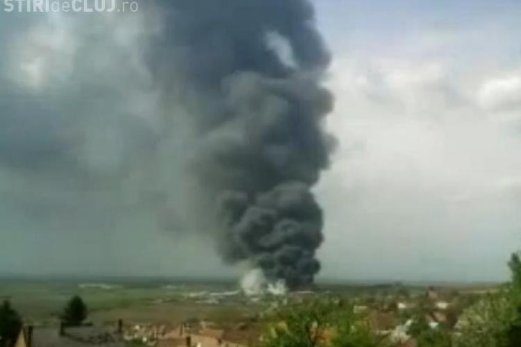 Incendiu devastator in Satu Mare, la o fabrica de mobila. Pagubele sunt de cateva milioane de euro! - VIDEO