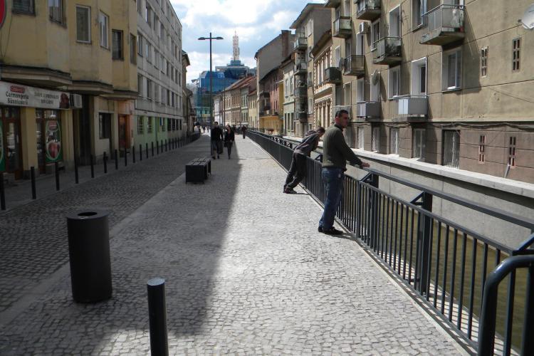 Pietonala in zona Canalul Morii, intre strada Regele Ferdinand si Piata Mihai Viteazul - VIDEO si FOTO