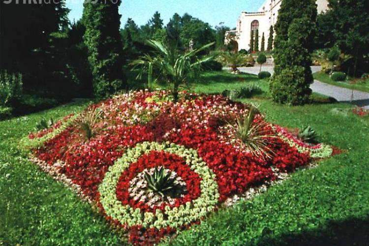 Se cauta voluntari pentru plantarea de flori in Gradina Botanica din Cluj-Napoca!