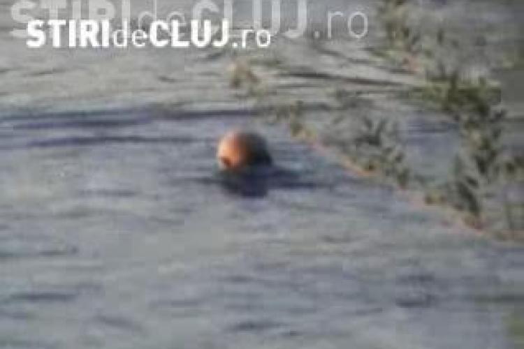 Imagini incredibile pe Somes! Un batran beat a vrut sa se racoreasca in rau si a scapat ca prin minune de la inec! VIDEO