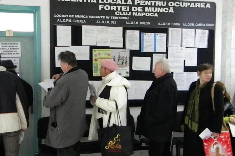15% din totalul locurilor de munca vacante in tara sunt in judetul Cluj. Vezi ce meserii se cauta!