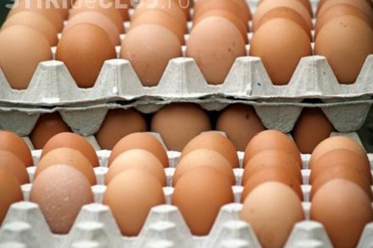 """Mii de oua ramase de la Pasti, pregatite pentru a fi """"aruncate"""" pe piata Clujului"""
