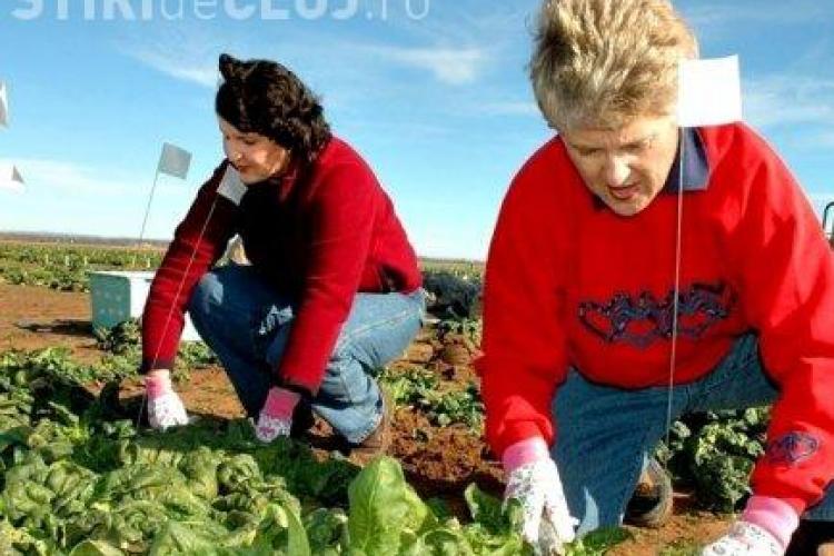 Spania restrictioneaza accesul muncitorilor romani pe piata muncii