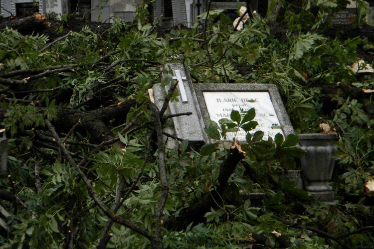 Morminte rasturnate si cruci daramate in Cimitirul Central, in urma furtunii de miercuri dupa-masa VIDEO si FOTO