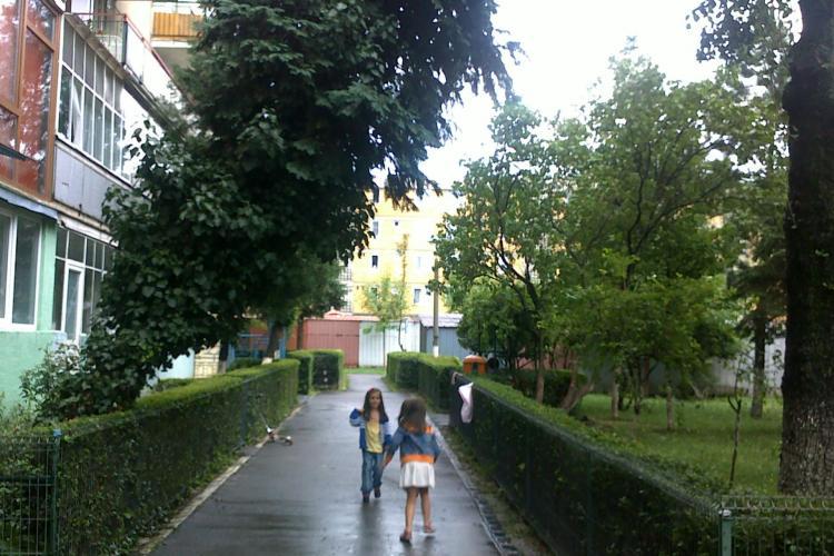 "Copiii de pe o strada din Cluj se joaca sub amenintarea unui copac care sta sa cada. RADP a refuzat sa-l taie pe motiv ca ""il tine iedera"""