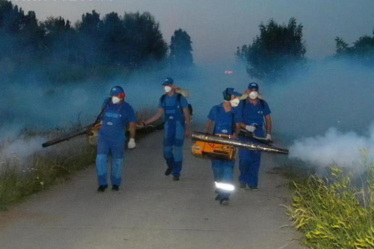 Incepe o noua campanie de dezinsectie la Cluj-Napoca!