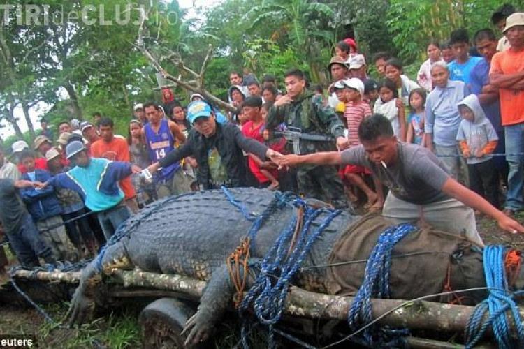 Asa arata cel mai mare crocodil din lume! VIDEO