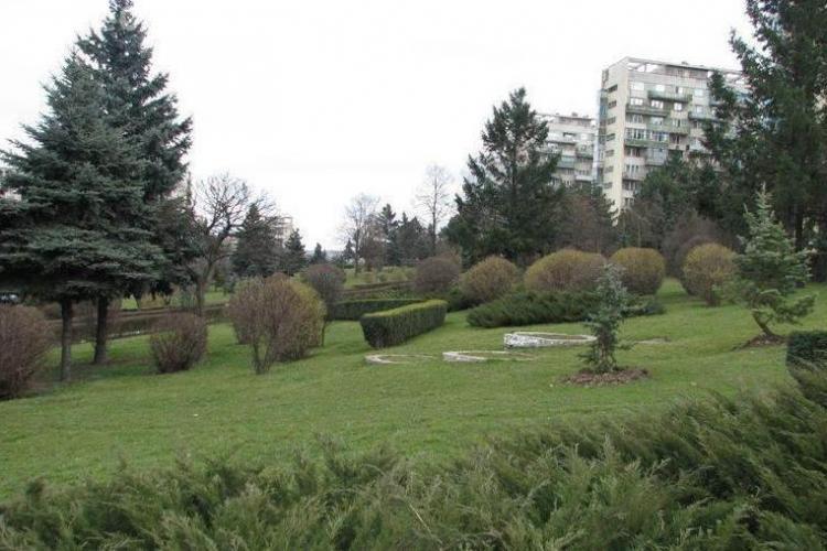 Topul celor mai verzi cartiere din Cluj-Napoca! Cati metri patrati de verdeata sunt in oras VIDEO