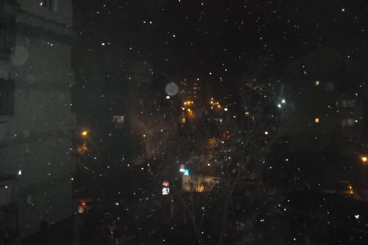Prima ninsoare din acest an. Clujenii spera sa aiba zapada de sarbatori FOTO