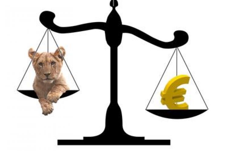 Increderea romanilor in moneda nationala creste, iar cea in EURO scade