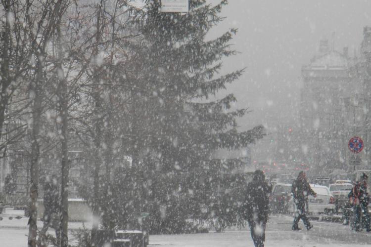 Cluj: Va ninge pana joi la pranz si vom avea -12 grade Celsius