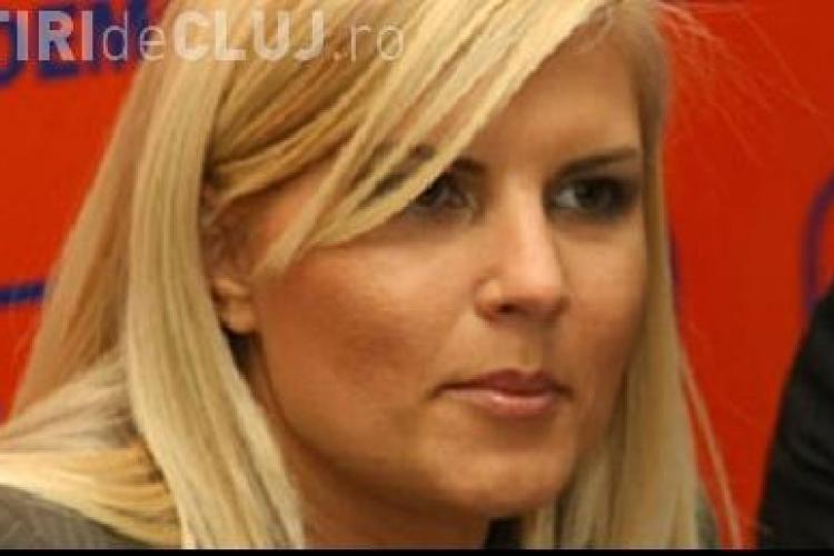 Elena Udrea: Avem nevoie de un Guvern mai putin erodat. Vezi ce scrie Udrea pe blogul ei