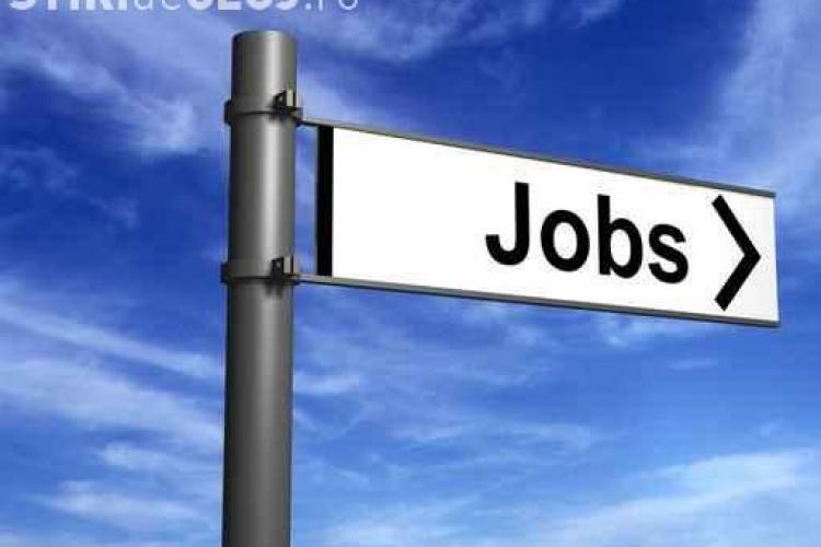 332.000 de someri ar putea avea locuri de munca in 2012