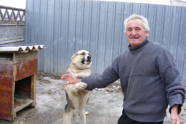 INCREDIBIL: Clujean amendat cu 100 de lei pentru ca ii latra cainele VIDEO