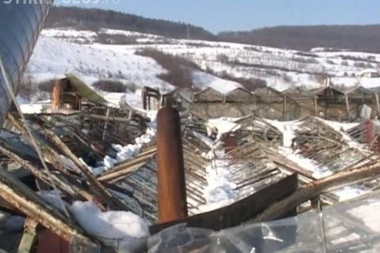 Sere distruse de zapada la Cuzdrioara, langa Dej VIDEO