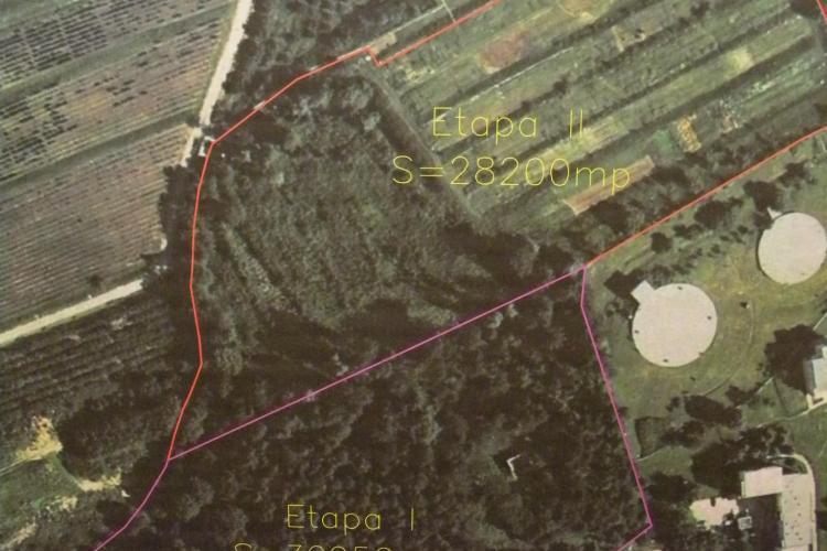Parcul de 6 hectare din cartierul Zorilor, aprobat de consilieri! Vezi cum va fi amenajat VIDEO