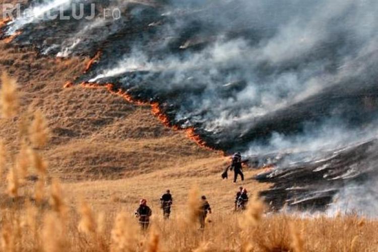 Incendiu de padure in comuna Sic