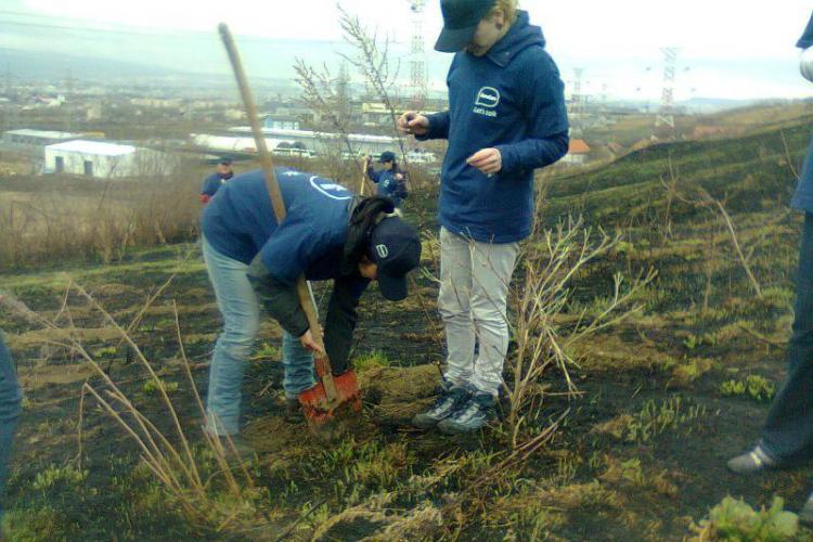 10.000 de arbori plantati in Padurea Tineretului