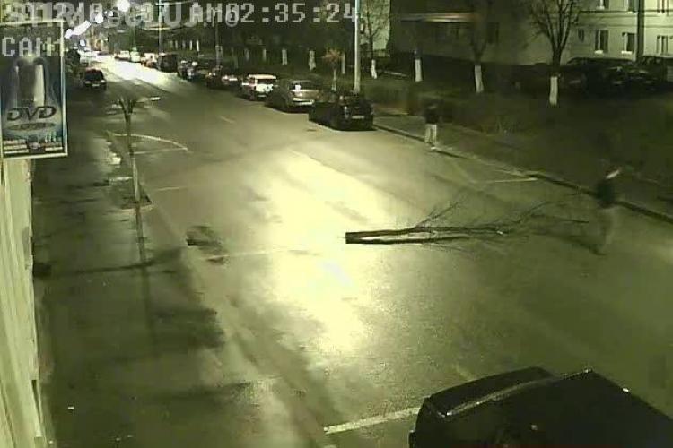 Dej: Au pus un arbore pe strada, de amuzament, si puteau provoca un accident IMAGINI CAMERA DE SUPRAVEGHERE
