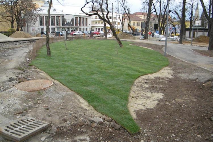 Gazon englezesc in Parcul Central! In 3 zone se planteaza rulouri cu iarba FOTO