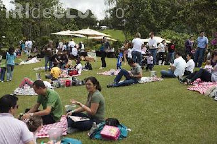 Masuri de prevenire a incendiilor recomandate clujenilor care-si petrec ziua de 1 mai la picnic