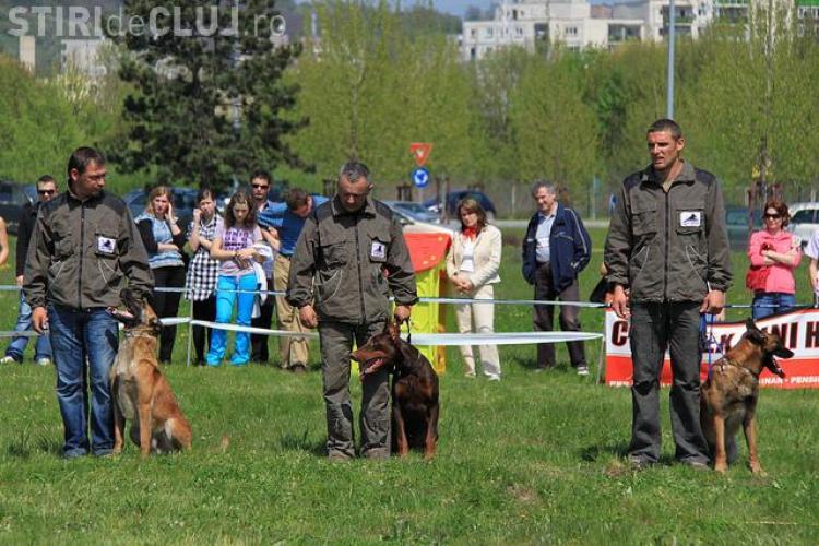 """""""Hiperparada Animalelor"""" incepe maine la Cluj-Napoca!"""