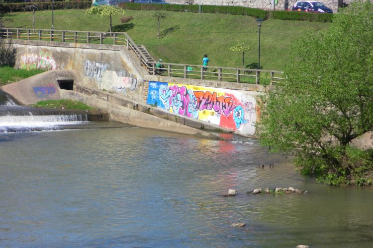 Clujul este impanzit de grafitii! Ce poate stopa acest fenomen? FOTO