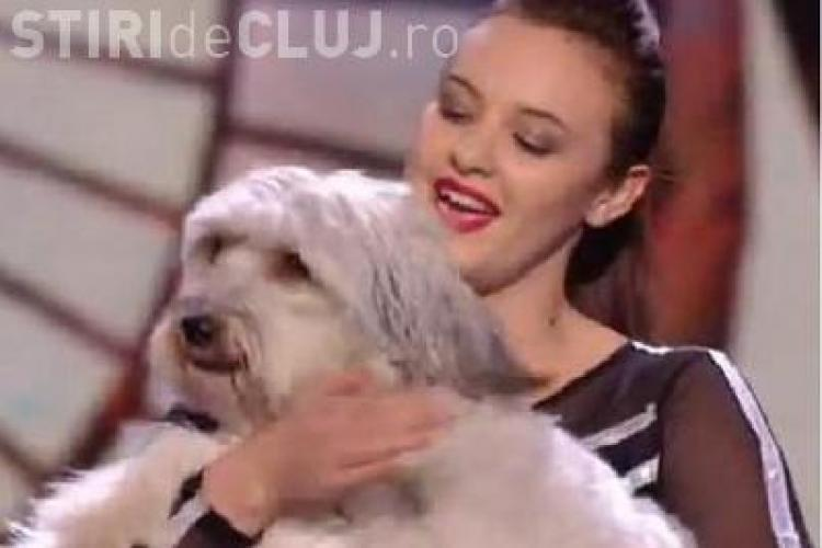 "Cainele Pudsey a castigat ""Britain's Got Talent"" 2012 VIDEO"