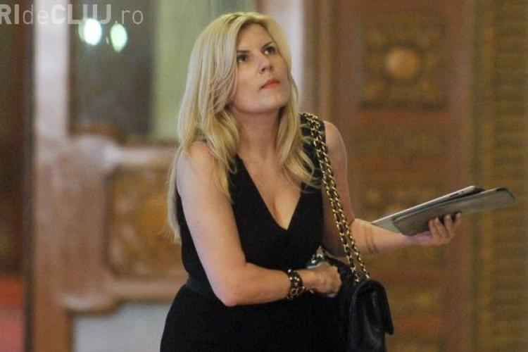 Udrea: Multi colegi mi-au cerut sa le angajez amantele
