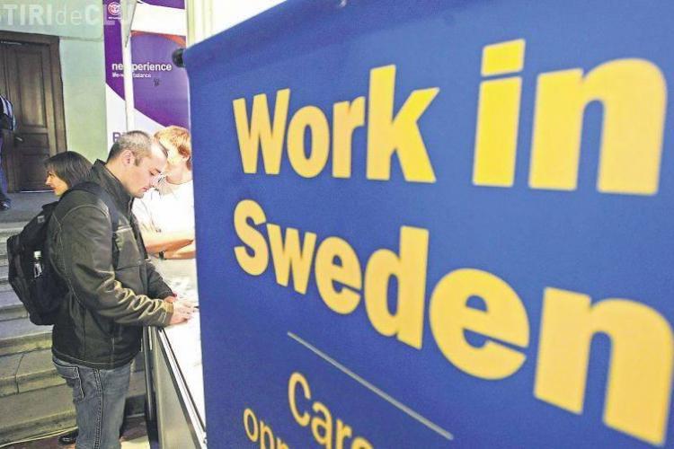 Romanii sunt la mare cautare in Suedia. Vezi ce joburi sunt disponibila