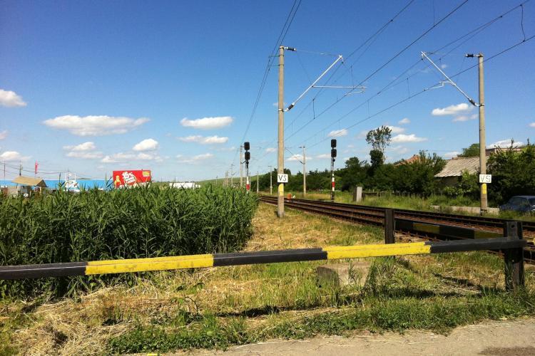 La Sannicoara te loveste trenul in doua secunde! Soferii se plang ca nu vad trenul din cauza stufului
