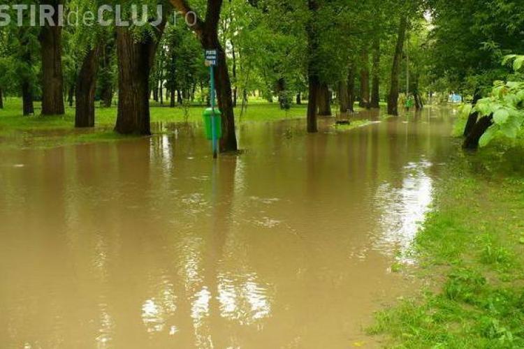 VIDEO - Inundatii si in Gherla! Parcul din oras este sub ape. Somesul Mic s-a revarsat si a inundat si unele gospodarii - FOTO