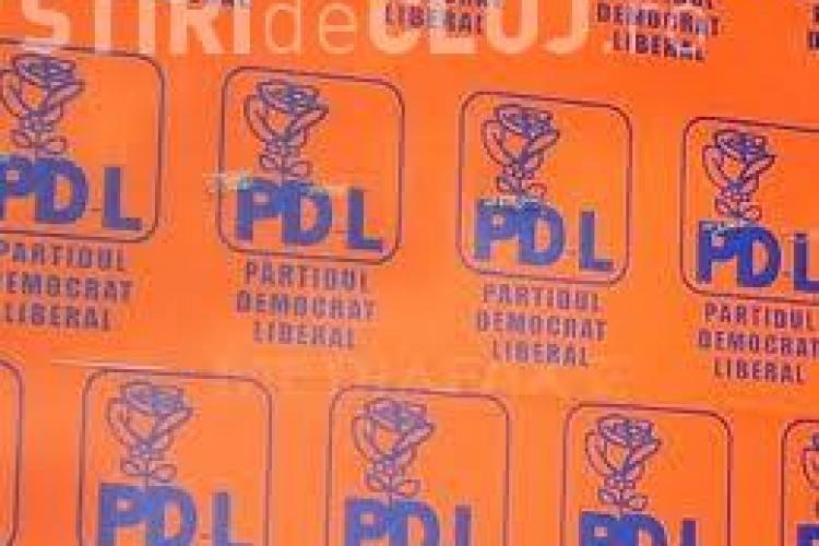 PDL Cluj: Politicile guvernamentale promovate de USL: plagiat, lovituri de stat, abuzuri şi clientelism de partid!