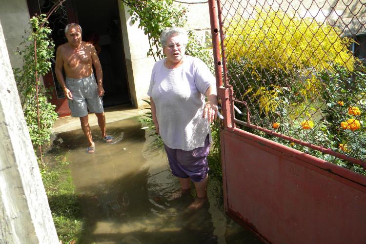 Inundație în Grigorescu, pe strada C. A Rosetti! Muncitorii au spart o magistrală de apă, lăsând cartierul fără apă VIDEO