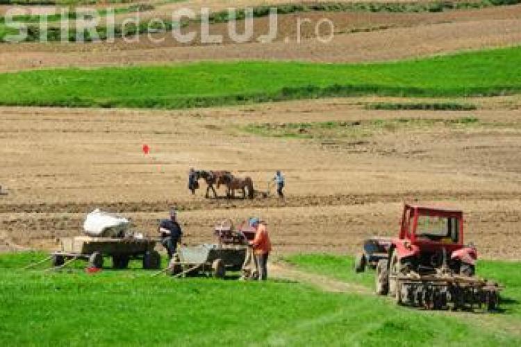 Agricultura ABANDONATĂ în România în 2020?