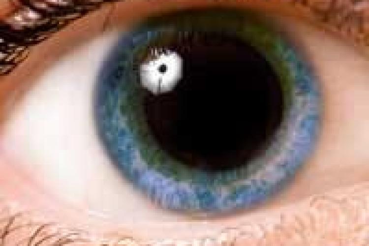 Pupilele îţi pot dezvălui orientarea sexuală