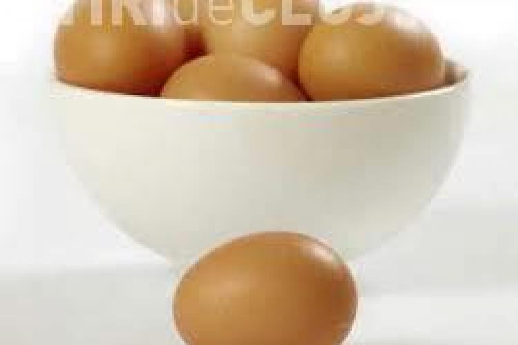 STUDIU: Este sau nu benefic oul pentru organism?