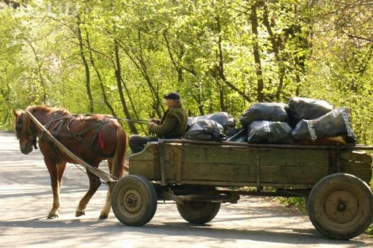 Două căruţe S-AU CIOCNIT frontal pe un drum naţional